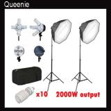 Pro 5 socket 2000 watt 2 light octagon softbox lighting kit